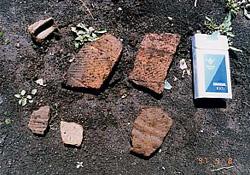 中ノ台遺跡で発掘された縄文土器のかけら